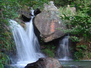 情岛特惠一日游观水上森林奇观,赏琴湖飞瀑奇